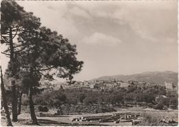 Corse Du Sud.  Porto Vecchio.  Dépôts De Liège. - Frankrijk