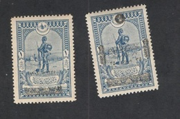 TURKEY1919:Michel654,XI Mh* - 1858-1921 Impero Ottomano