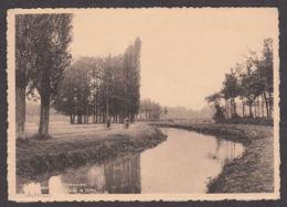 104012/ WESTERLO, Netheboorden - Westerlo