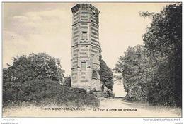 LOT DE 2 Cpa..78..MONTFORT L'AMAURY..LA TOUR D'ANNE DE BRETAGNE..PLAN HORIZONTAL PEU COURANT..2 SCANS - Montfort L'Amaury