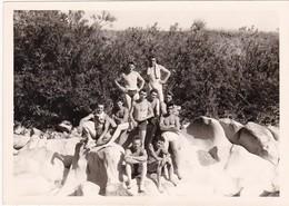 Pyramide De Jeunes Hommes Sur Un Rocher, Au Bord De La Rivière : Torse Nu - ( Format 12cm X 8,5cm ) - Personnes Anonymes