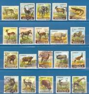 Angola 1953 -  Animals Of Angola  - Complete Set -  TB - - Angola