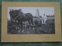 TURRETOT - Eté 1934 - La Moisson - Andere Gemeenten
