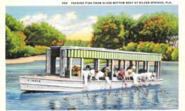 [DC12139] CPA - UNITED STATES - FLORIDA - SILVER SPRINGS - FEEDING FISH GLASS BOTTOM BOAT - PERFETTA - Non Viaggiata - Silver Springs