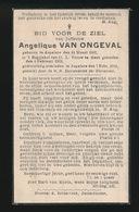 ANGELIQUE VAN ONGEVAL   ASPELARE  1882    1941 - Décès