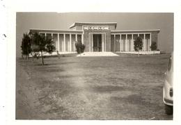 CONGO BELGE .LEOPOLDVILLE .1961 .LOVANIUM - Africa