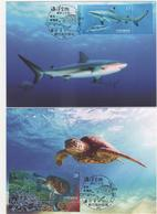 2018 R.O CHINA(Taiwan)- Maximum Cards - Marine Life-Shark And Green Sea Turtle (2V) - 1945-... Republic Of China