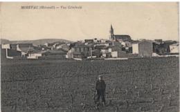 Lot-03 - Mireval - Vue Génerale - Frankreich