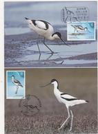 2018 Taiwan R.O.CHINA -Maximum Card.- Birds Of Taiwan (4Pcs.) - 1945-... Republic Of China