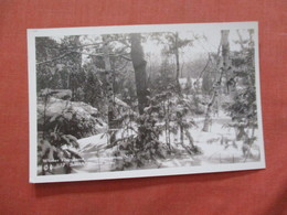 RPPC  Winter Fairyland   Kingston New York > Ref 3988 - NY - New York