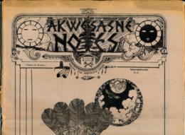 AKWESASNE NOTES (Spring 1981),Volume 13, Numéro 1, Newspaper Indian, Journal Indien, Mohwak, Ontario, New-York, 36 Pages - Histoire
