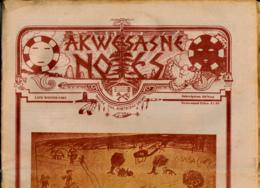 AKWESASNE NOTES (Late Winter 1982), Newspaper Indian, Journal Indien, Mohwak, Ontario, New-York, 36 Pages - Histoire