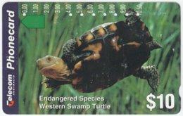AUSTRALIA A-713 Optical Telecom - Animal, Sea Life, Turtle - Used - Australië