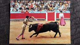 CPSM CORRIDA DE TOROS TAUREAUX COURSE BULL FIGHT FEAST UN BUEN PAR DE BANDERILLAS ED PALEYO - Stierkampf