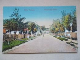 CPA BAILE VULCANA Bulevardul Carol - Rumania