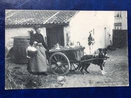 """""""Laitière Flamande Et Son Attelage De Chien """"(2200)--1911 - Artisanat"""