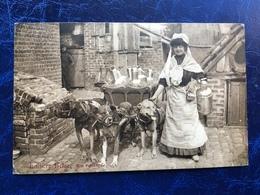 """""""Laitière Belge Et Son Attelage De Chiens En Route """"(2215)--1908 - Artisanat"""