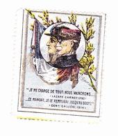 Vignette Militaire Delandre - Patriotique - Je Me Charge De Tout - Gallieni - Vignettes Militaires