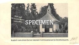 Bidprentje Kapel Van OLV Van Banneux Te Dentergm - Dentergem