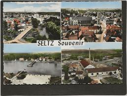CPSM Seltz  Edition Lapie N° Multivues - France