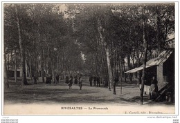 RIVESALTES   La Promenade  Echoppe   Carte écrite En 1911  2 Scans - Rivesaltes