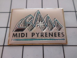 1216a Pin's Pins / Beau Et Rare / THEME : ADMINISTRATIONS / CRAM MIDI PYRENEES - Administración