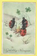 * Fantaisie - Fantasy - Fantasie * (53056) Bonne Année, New Year, Snow, Coccinelle, Ladybug, Kampvuur Feu De Camp - New Year