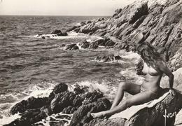 L' Ile Du Levant ( Les Pierres Plates Femme Nue ) - Nus Artistiques (1960-…)
