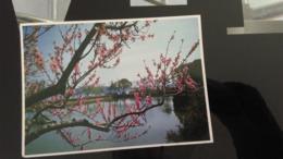 CSM -   Chine -  LI YUAN A Garden On The Banks Of Li Lake .............. - Chine