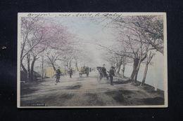 JAPON - Carte Postale - Tokyo - Mukojima - L 58162 - Tokyo
