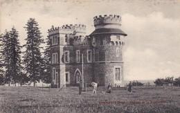 COURGEOUT - Château De La Grossinière - Autres Communes