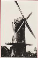 Niel Aan De Rupel Windmolen Molen Moulin  (fotografische Reproductie Van Veel Oudere Foto - Oude Foto Jaren '70) - Niel