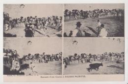 27723 AIGUES MORTES - Souvenir Course -multivues -taureau Corrida -Bernheim Nimes - Aigues-Mortes