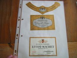 Lot étiquettes Champagne - Champagne