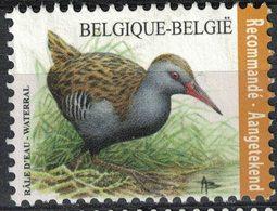 Belgique 2017 Used Bird Oiseau Râle D'Eau Waterral Recommandé - Belgien