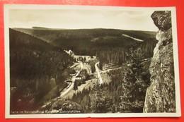 I2-Germany Vintage Postcard- Partie Im Natzschungtal (Erzgeb.) Gabrielahutten - Sudeten
