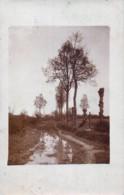 Belgique - Lummen - Carte-Photo Adressée à L'Artiste Peintre PAUL VANDEVENNE (1870-1954) -  - Un Coin De Campine - Lummen
