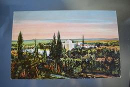 A092 Israel Jericho Judaica - Israel