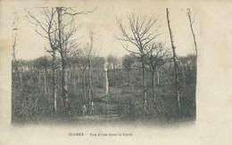 Guines - Vue Prise Dans La Forêt - Guines