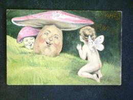 CARTOLINA -FUNGHI -F.P. LOTTTO N°1005 - Cartes Postales