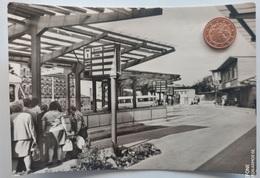 Annaberg-Buchholz I.E., Bus-Bahnhof, 1975 - Annaberg-Buchholz