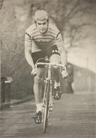 Postcard Pieter Nassen -  Rokado  - 1973 - Cyclisme