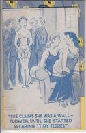 Lot De 10 Cartes Humoristiques Et Sexy Ladies - Humour