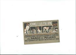 ESPOSIZIONE INTERNAZIONALE CANINA 1901-Non Viaggiata - Expositions