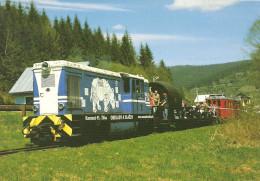 RAIL RAILROAD TRAIN DIESEL LOCOMOTIVE CIERNY HRON RAILWAY RHINOCEROS RHINO ANIMAL SLOVAKIA SLOVAK Top Card 3542 Hungary - Trains