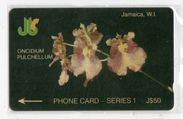 JAMAIQUE  TELECARTE REF MV CARD JAM-6E J$50 CN 6JAME DATE 1991 - Jamaica