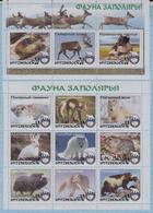 Fantazy Labels / Private Issue. Animals. Fauna Of The Arctic . Spitsbergen. Svalbard. Arctikugol. 2016 - Fantasie Vignetten