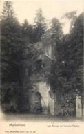 Belgique - Morlanwelz-Mariemont - Les Ruines De L' Ancien Palais - Nels Série 64 N° 20 - Morlanwelz