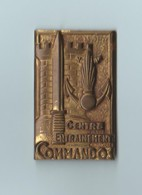 2 Insignes Centre Entrainement Commandos Givet Drago Paris N° 2005 Et Insigne De Béret Infanterie - Coinderoux Paris - Army
