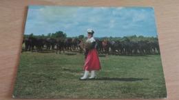 CSM -  3040. IMAGE DE PROVENCE - Mireille Visitant Sa Manade - Autres Communes